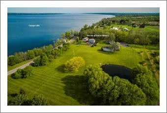 Winery For Sale - Finger Lakes Winery, Vineyard, Home and Cherry Orchard For Sale - Wine Real Estate