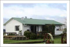 Vineyard For Sale - New Zealand Vineyard and Home For Sale - Gimblett Gravels - New Zealand Wine Country