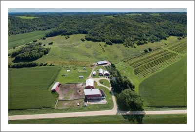 Minnesota Winery, Vineyard and Hobby Farm For Sale - Flower Valley - Hobby Farm w/ Craftsman Style Farmhouse For Sale