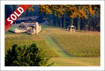 AUCTION - Virginia Winery, Vineyard and 3 Homes For Sale - Virginia Wine Country Real Estate - Retirement Auction