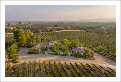 Paso Robles Vineyard For Sale - Cabernet, Merlot, Syrah Vineyard For Sale - Custom Home w/ Guest House - Paso Robles Real Estate