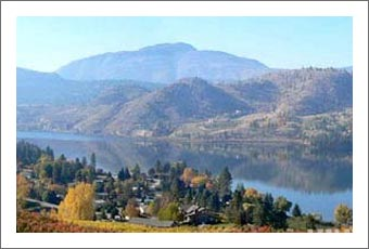 Orchard For Sale - Okanagan Valley Orchard and Vineyard For Sale