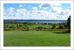 Finger Lakes, NY - Wine Country Home Fro Sale - Winery & Vineyard Potential - Wine Real Estate