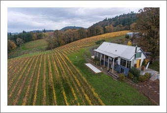 Willamette Valley Vineyard & Contemporary / Modern Home For Sale - Eola-Amity Hills AVA - Oregon Wine Country Real Estate
