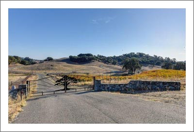 Amador County Land For Sale - 40 Acres - Vineyard Potenial - Custom Home w/ 2nd Building Pad - Wine Country Real Estate