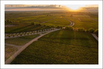Argentina Vineyards For Sale - Mendoza Wine Country Winery Resort - Argentina Wine Real Estate