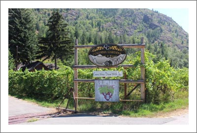 British Columbia Winery For Sale - Canada Vineyard For Sale with Retail Store - Wine Country Real Estate