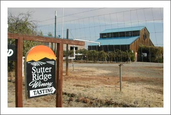 Winery For Sale - Amador County Winery, Vineyard, Land, and Event Venue For Sale - Sutter Ridge Winery
