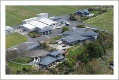 New Zealand Winery & Vineyard For Sale - Wine Country Home