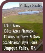 Oregon Vineyard Land For Sale - Olive and Kiwi Orchard For Sale - Wine Country Home