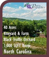 North Carolina Vineyard, Black Truffle Orchard and Farm For Sale - Wine Country Real Estate