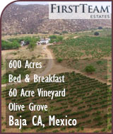 Baja CA Mexico Vineyard and B&B For Sale