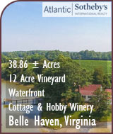 Virginia Waterfront Vineyard, Cottage and Hobby Winery For Sale