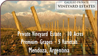 Argentina Vineyard For Sale - Private Vineyard Estate / Finca For Sale