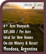 Argentina Vineyards For Sale - Mendoza Wine Country Winery Resort - $85K per Acre