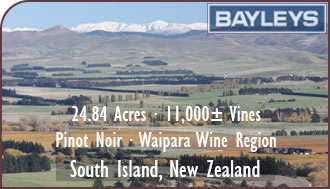 New Zealand Vineyard For Sale - Pinot Noir Vineyard For Sale - South Island, NZ Wine Real Estate