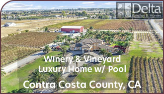 Northern California Winery For Sale - Vineyard, Luxury Home w/ Pool  - Wine Country Real Estate