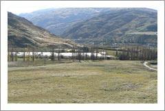 Central Otago Vineyard Land Property For Sale By Tender - Wine Real Estate