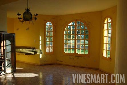 Argentina Organic Winey with Boutique Hotel/Restaurant and Vineyards - For Sale - Wine Real Estate