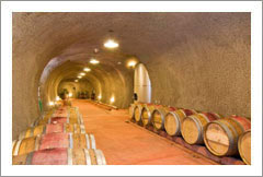 Napa Valley Vineyard and Winery For Sale - Wine Cave - Napa Valley - Wine Real Estate