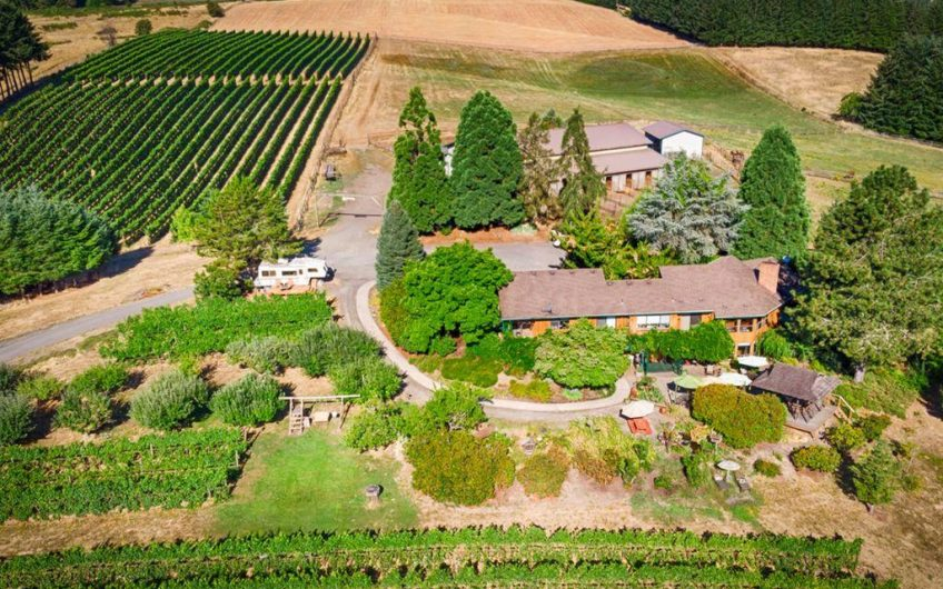 Willamette Valley Vineyard & Winery For Sale w/ Home & Equine Facilities