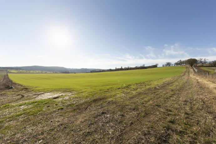 Prime Plantable Vineyard Land in Willamette Valley For Sale – Van Duzer Corridor AVA