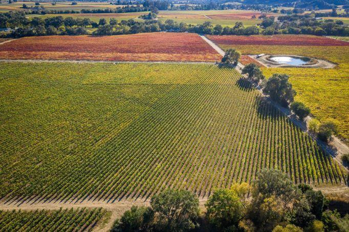 Napa Valley Estate Parcel & Vineyard