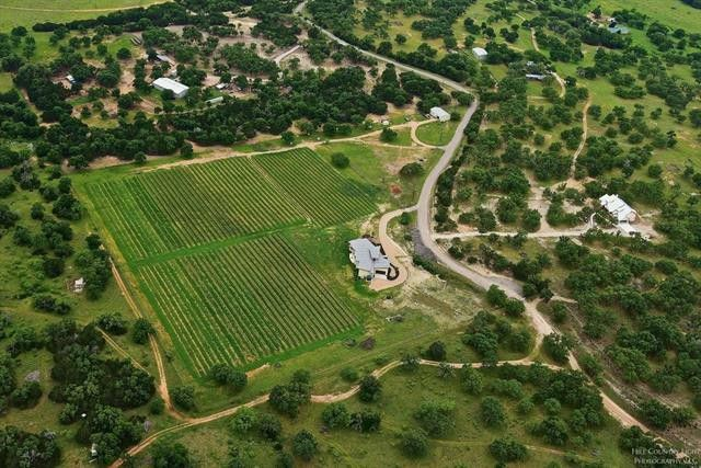 Texas Hill Country Vineyard For Sale w/ Luxury Home – Round Mountain Vineyard