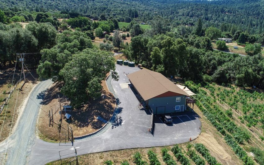 Sierra Foothills Winery and Vineyards For Sale
