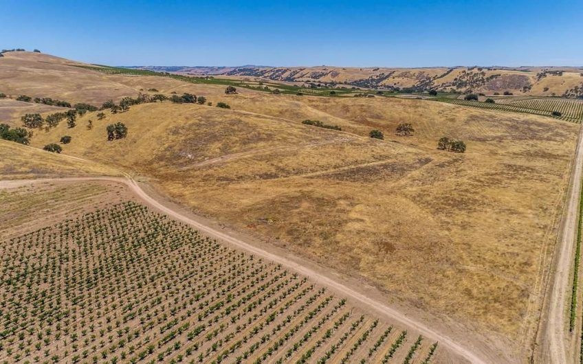 Paso Robles AVA Vineyard For Sale w/ Winery Permit