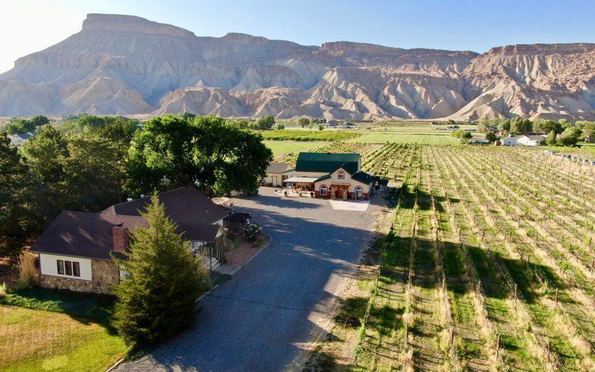 Palisade Colorado winery for sale with vineyard, tasting room, farmhouse — Garfield Estates