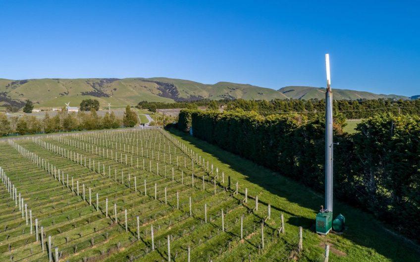 New Zealand Vineyard For Sale – Pinot Noir – SOLD