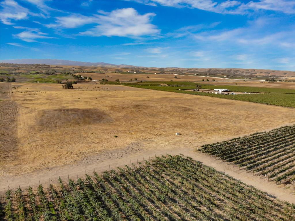 Livermore Valley Vineyard Estate For Sale - Livermore Valley Land For Sale