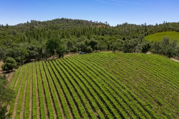 Spectacular Central Coast Winery for Sale