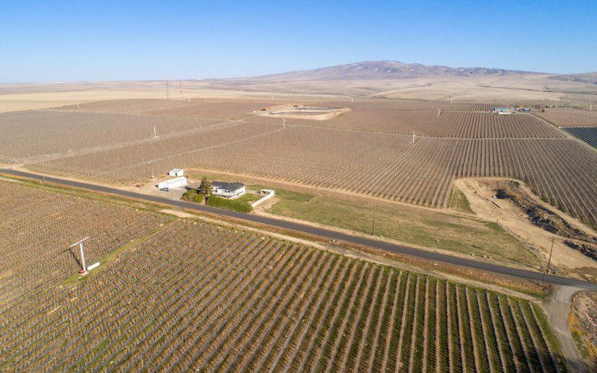 Washington Vineyard & Apple Orchard For Sale – Spring Creek Vineyards