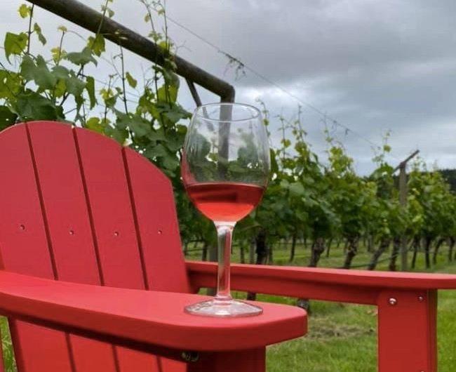Hornby Island Vineyard For Sale w/ Wine Bar & Glamping!