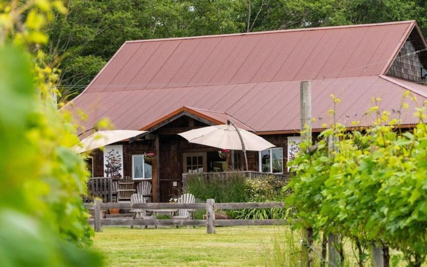 Vancouver Island Winery & Vineyard For Sale – Beaufort